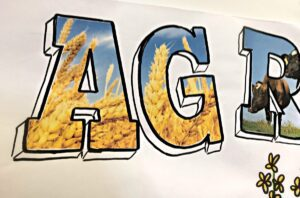 calgary stampede graphic recording, title detail, graphic recording title, title ideas for graphic recording, scribing title, live illustration, graphic recording, live scribing, live facilitation, graphic facilitation, interactive graphic recording, conference engagement, conference techniques, trade show engagement, knowledge wall, idea wall, fuselight creative, graphic recorder calgary, graphic recording company, facilitation company, tanya gadsby, igniting ideas in ink